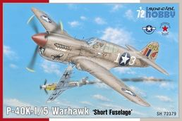 Curtiss P-40K-1/K-5 Warhawk 1/72